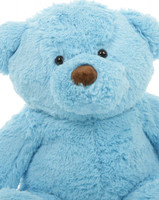 Sammy Chubs Blue 2 Ft Teddy Bear