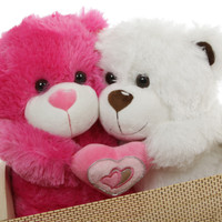 Hot For You Bear Hug Care Package featuring 18in ChaCha & Chomps Big Love