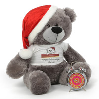 Silver Teddy Bear Christmas Gift