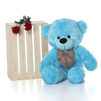 hug our big 2 ½ ft light blue teddy bear Happy Cuddles