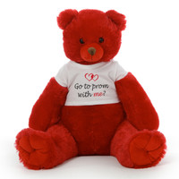 Prom Proposal Teddy Bear