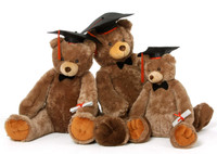 Sweetie Tubs Graduation Teddy Bear Family 2018