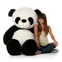 6ft Stuffed Rocky Xiong Panda with Model