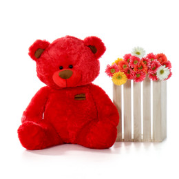Randy Shags bright red teddy bear 35in