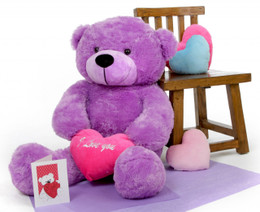 True Love Bear Hug Care Package with DeeDee Cuddles Purple 38in