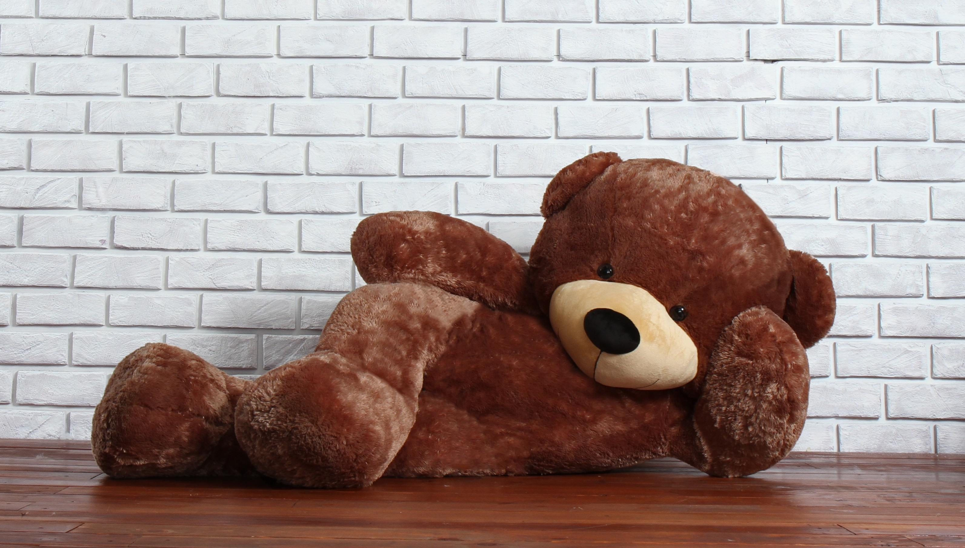 giant-7-foot-teddy-bear-posing.jpg