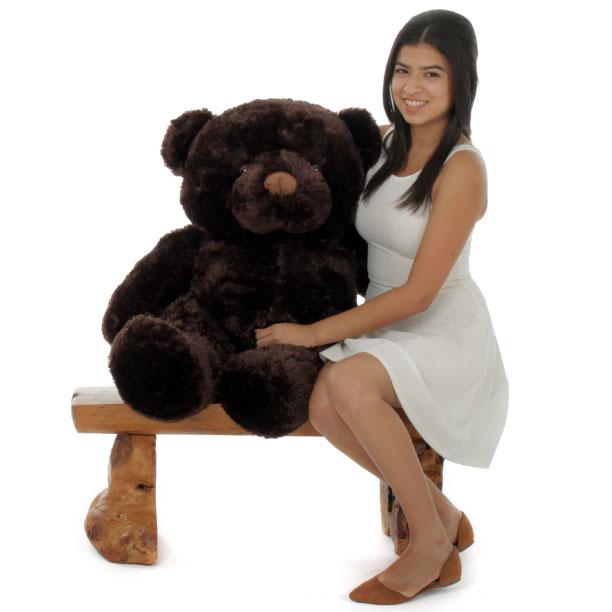 munchkin-chubs-beautiful-dark-brown-fur-luxuriously-soft-38-in.jpg