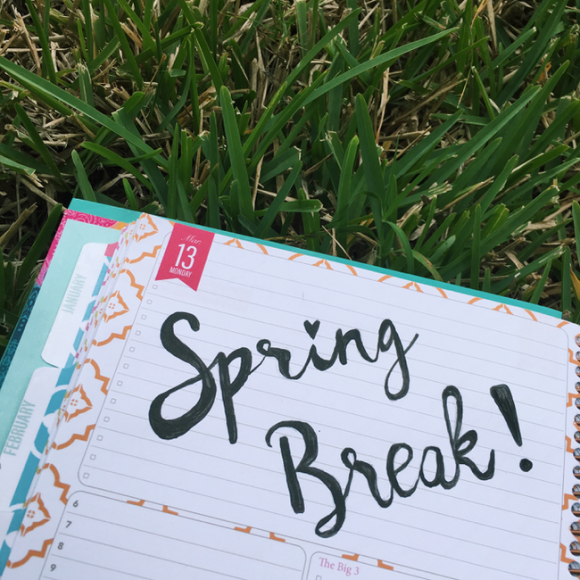 Fun Things to do for Spring Break 2017
