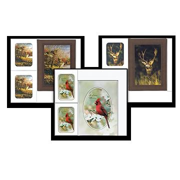 Wildlife Box Sets