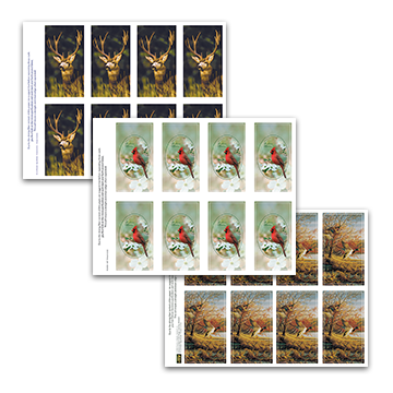 Wildlife Prayer Cards