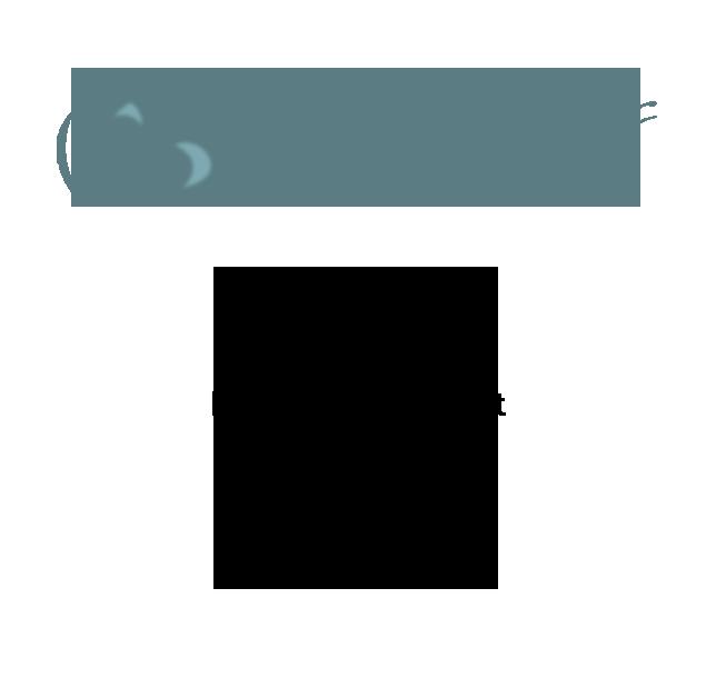 Precious Memories Designer Products
