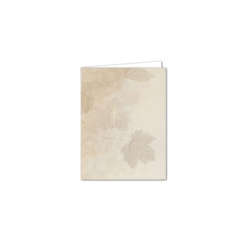Service Record Folder 298 Large Blank Inside