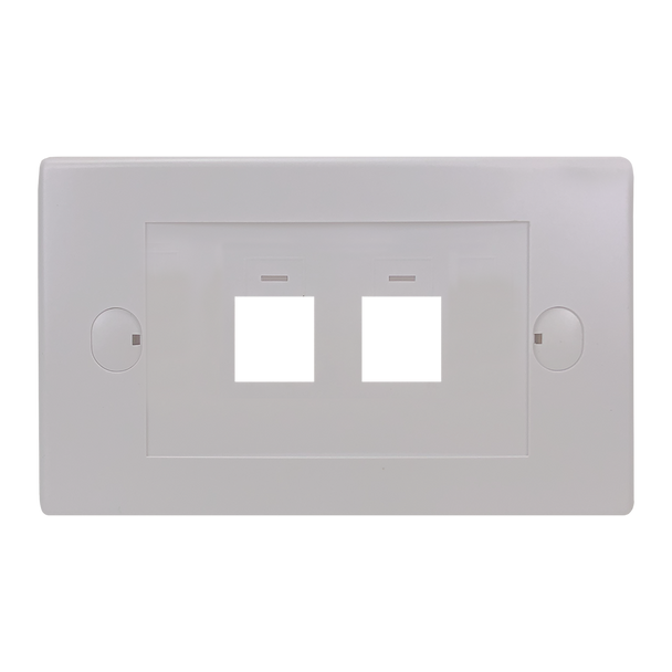 2Port Flush Plate - P4302