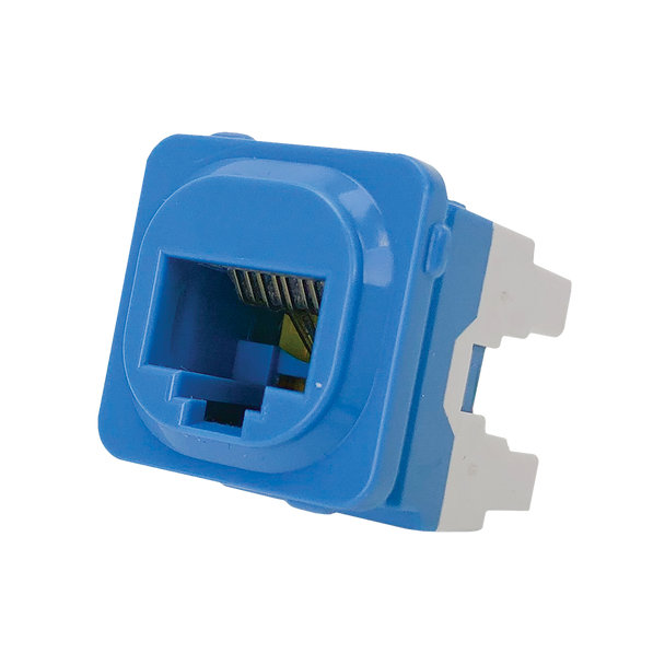 8P4C IDC Voice Jack Blu 50-Bucket - P4664BLU