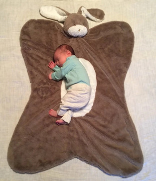 Embroidered Plush Bear Baby Nap Mat