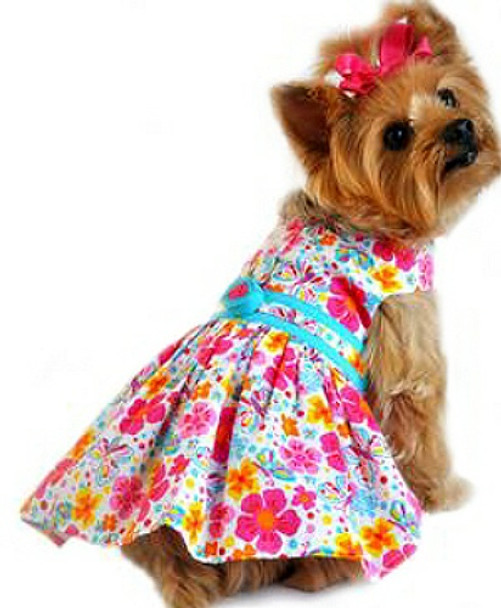 Fiesta Turquoise and Hot Pink Floral Dog Harness Dress