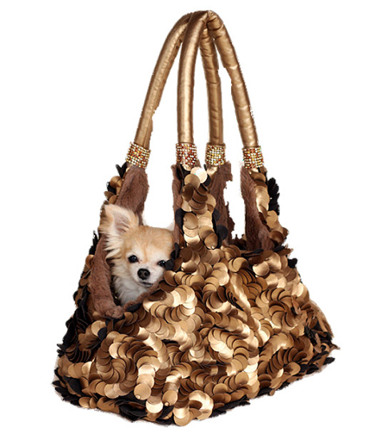 Golden Duchess Pet Dog Carrier