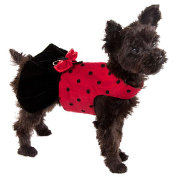 Formal Red Lady Bug Dog Harness Dress