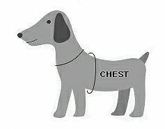 dog-measuring-chest.jpg