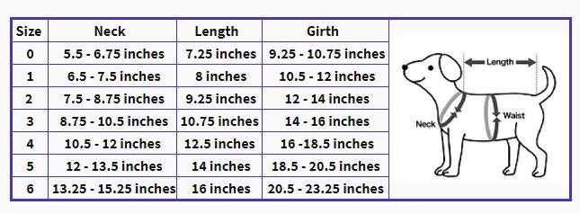 size-chart-costumes-.jpg