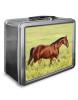 Beautiful Bay Horse Lunch Box