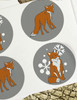 Winter Snow Fox Stickers
