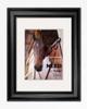 equestrian horse lover poster art print