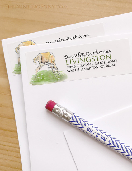 Baby Horse Foal Return Address Labels