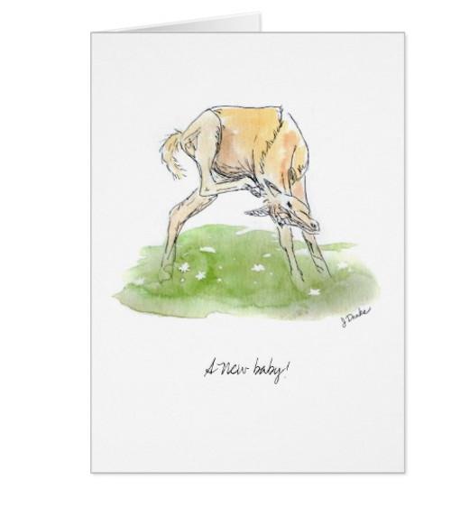 Newborn Baby Congratulations Equestrian Greeting Card