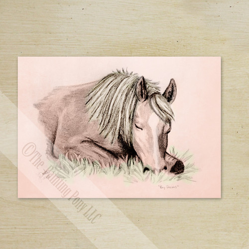 Pony Dreams Thank You Note Cards (10 pk)