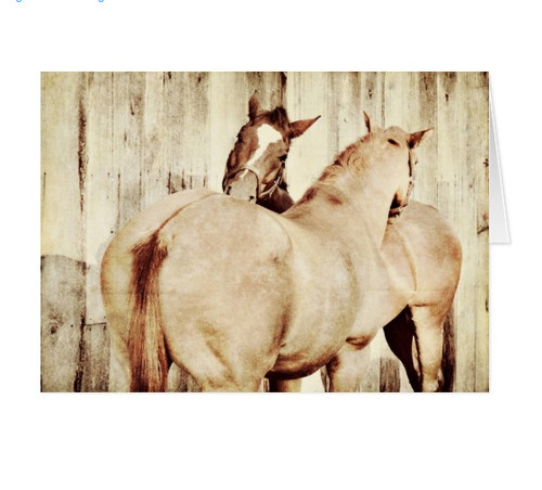 Best Friends Horse Birthday Card