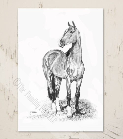 Horse art blank note cards