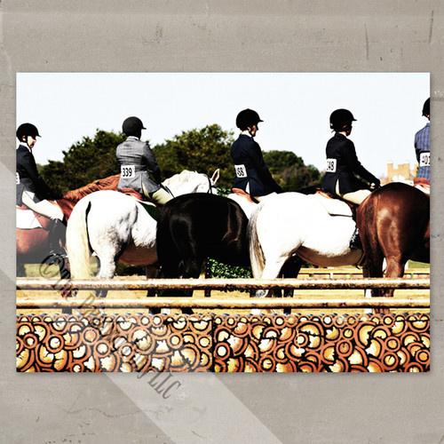 The Line Up Show Horse Fine Art Gallery Wrap Canvas