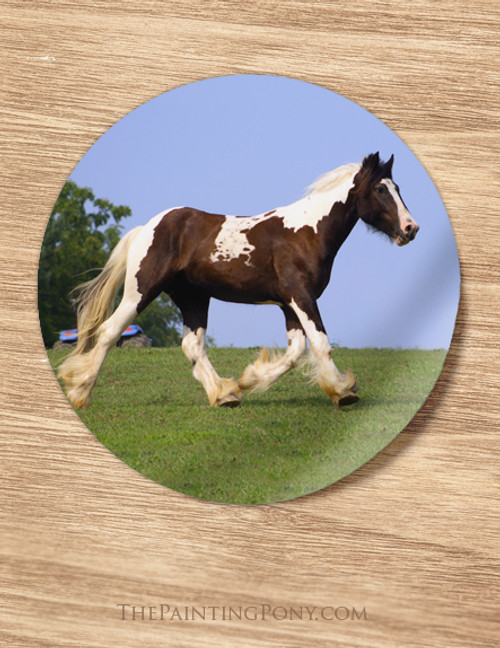 Gypsy Vanner Horse Stickers Pack