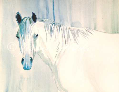 "9""x12"" watercolor painting on watercolor paper of a gray horse head in blue and green tones."