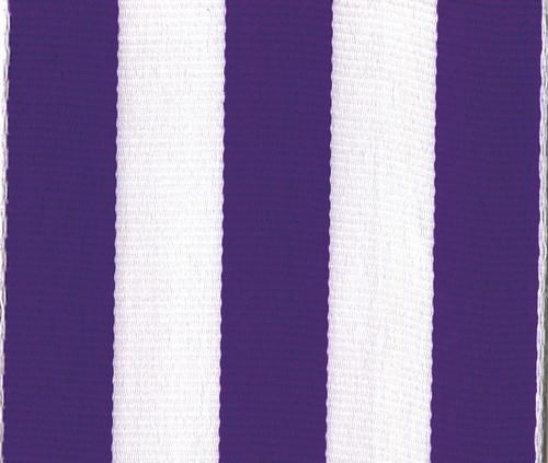 Purple Carnival Striped Grosgrain