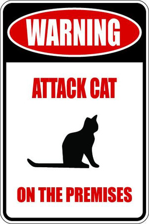 Attack Cat Sublimated Aluminum Magnet
