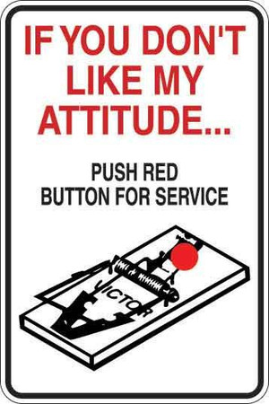 If You Don't Like My Attitude Sign Decal