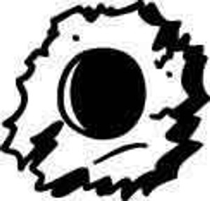 Bullet Hole Decal 1