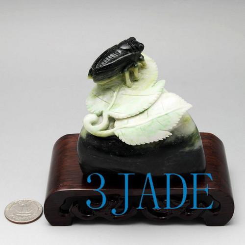 Dushan Jade Carving Cicada