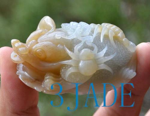 Jade Five Poisonous Creatures