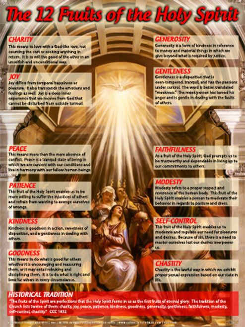 The Twelve Fruits of the Holy Spirit Explained Poster