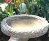Tulip Birdbath