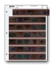 Print File 35-7B 35mm Negative Preservers (25 Pages)