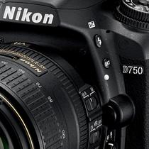 Nikon Advanced SLR Experience | Springfield