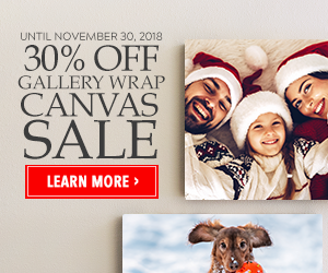 Canvas Sale November