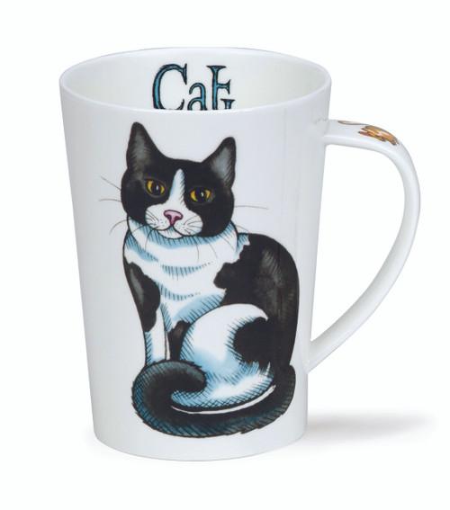 Argyll Cat