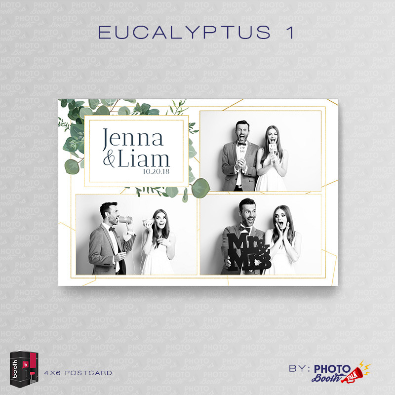 Eucalyptus 1 4x6 3 Images - CI Creative
