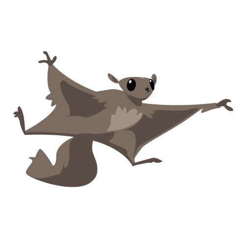 kidsfest-flyingsquirrel.png