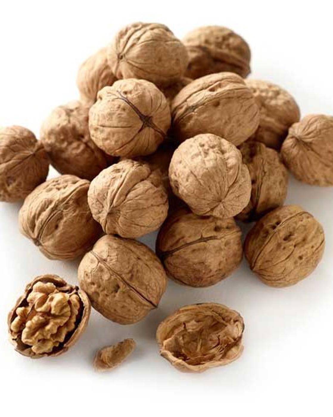 NZ Walnut-In-Shell 1kg